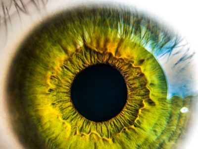 Physician viewpoint: 4 ways to protect patient privacy in the 'big data era'